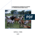 Proyecto Castilla - Rosa