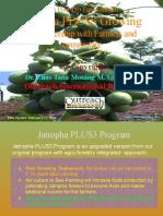 Pro Poor Pro Environment Jatropha Garden