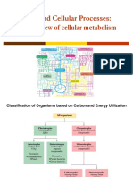 BT1000 - Cellular Metabolism.pdf