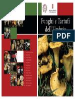 Funghi e Tartufi Dell'Umbria