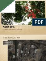 Biodiversity around Keio SFC