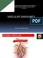 Vasculatura sanguinea y linfática