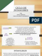 Ciclo de Intangibes