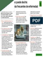 10 Signos de Enfermedad en Gatos