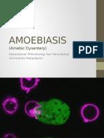 11. Amoebiasis-4th Year