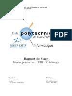 RapportStage_SimonBaudry.pdf