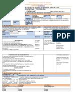 6 PLAN DE DESTREZAS (3).docx