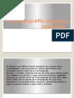 Cromatografía de Gases Capa Fina