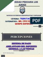 Percepciones Casos.pdf