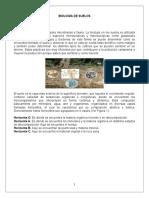 Biología de Suelos2