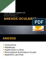 Anexos Oculares