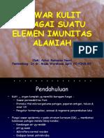 Sawar kulit