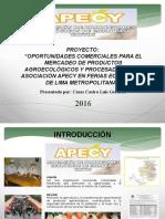 Oportunidades Comerciales Para El Mercadeo de Productos Agroecológicos y Procesados de La Asociación Apecy en Ferias Ecológicas de Lima Metropolitana 2016