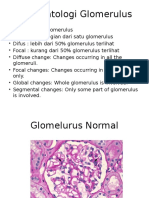 Histopatologi Glomerulus