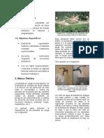 Informe Nº3 Pérdida de Carga en Tuberias Desarrollo