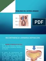 Sistema Urinario Fisiopatología