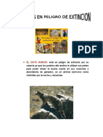 Animales de Exincion en Chile Grupal