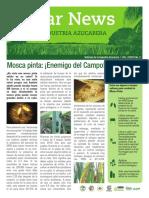 Sugar+Industry+Newsletter+Vol+2+Issue+3+Spanish+Final