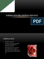 Embriologia Del Sistema Nervioso2