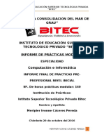 Practica Pre-Profesional.docx