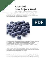 Beneficios Del Arandano Rojo y Azul