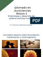 Diplomado en Neurociencias