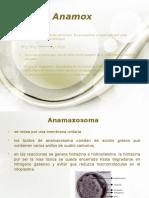 anamox