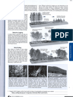 forestry guided notes-10312016094037