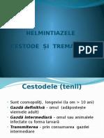 helmintiaze