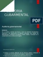 AUDITORIA GUBARMENTAL
