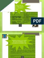 Instrucciones_Ejercicios (1).pptx