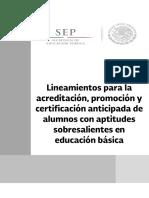 Lineamientos_acreditacion_promo2016