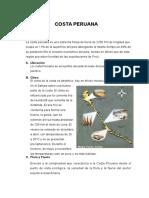 COSTA PERUANA.docx