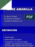 33 Fiebre Amarilla y Mononucleosis