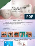 Profilaxia Cariei Dentare Mijloace Speciale Gr3