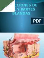 Infecciones de Piel y Partes Blandas Resumen