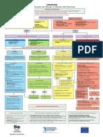Flujograma Dengue MSP DOR 12 de Agosto 2013