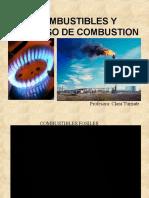 Combustibles y procesos de combusti+¦n 2013-2