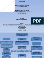 Genetica Mapas Conceptuales_ind 1,2,3