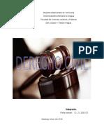 Ensayo Derecho Civil