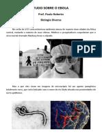 Tudo Sobre o Ebola - Biologiadiversa