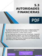 5.3 Autoridades Financieras