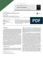 Neuromythology of EINSTEIN Briain