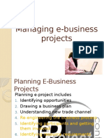 Managing E-business Projects
