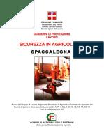 Spaccalegna
