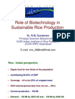 Biotechnology for Sustainable Rice Production-Aug. 2016