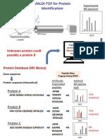 2016 Proteomic IIa_MS vs MS MS Spectrometry