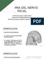 Anatomia Nervio Facial