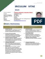 CV-MSP abr2015a (1)