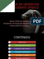 fisiopatologadelaccidenteofdico-130214142207-phpapp01
